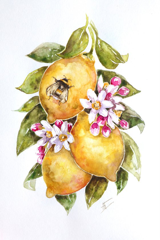 Watercolor lemons and bee illustration with pink flowers and green leaves