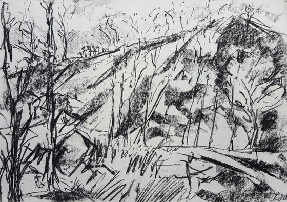 Wooded Hill
