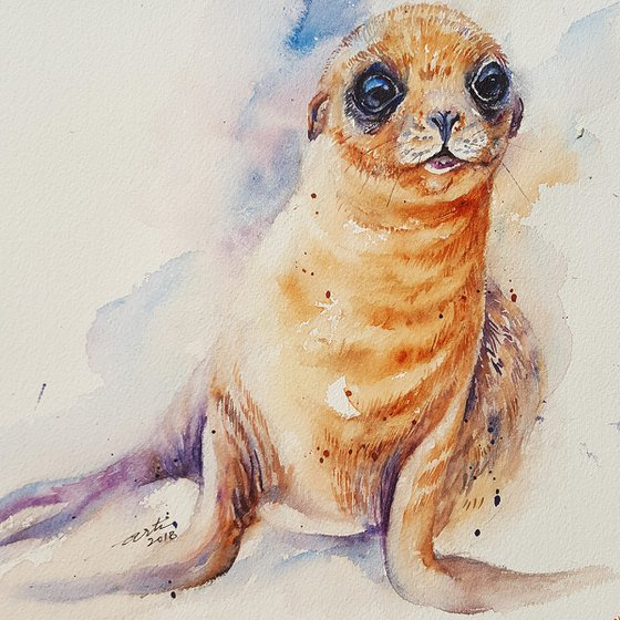 Selby the Sea Lion Cub