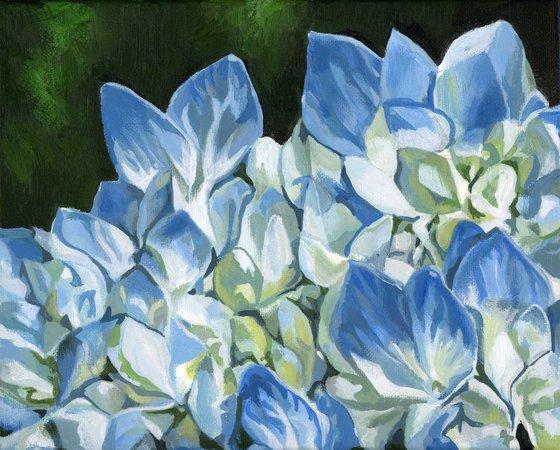 blue hydrangea acrylic painting