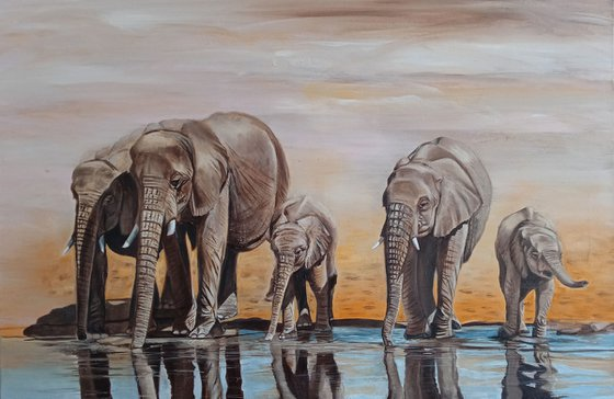 Elephants at the watering hole