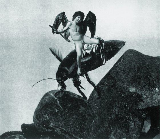 Cupid as Victor 30x21 cm / 11,81x8,26 inch