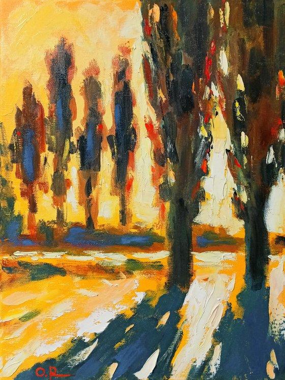 Sun in poplars 2