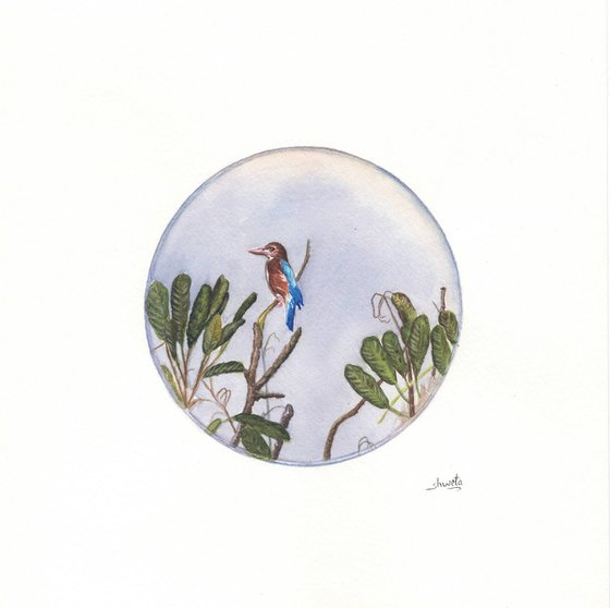 Blue-eared kingfisher watercolour painting