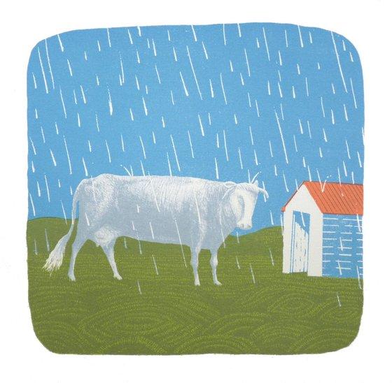 Rain on Plain