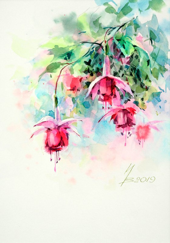 Bluebells Fuchsia