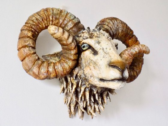 """Mixed media Ram head sculpture """"Pale and Interesting"""""""