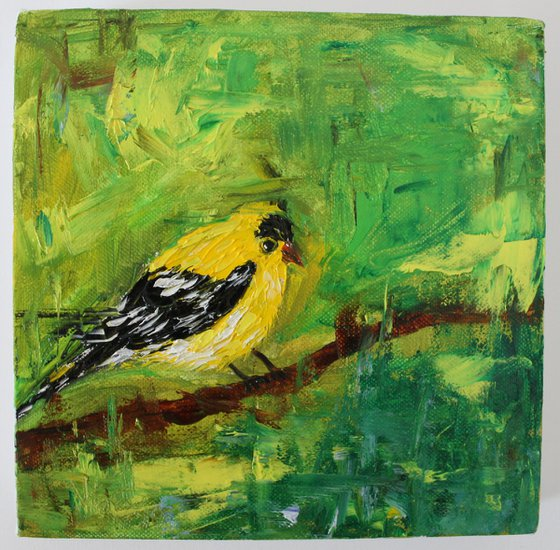 You are my golden bird - gold finch oil painting on stretched canvas - bird art - animal art