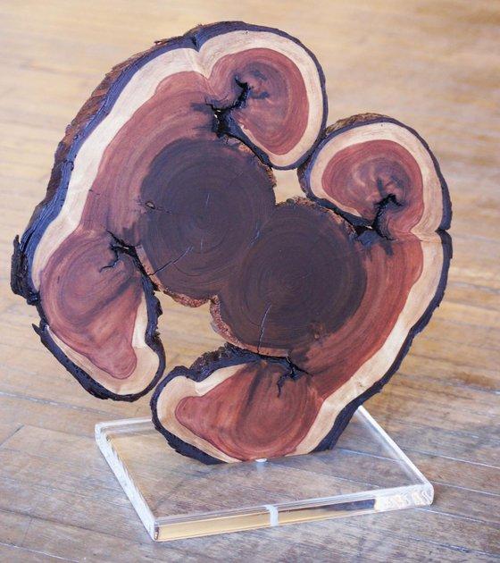'The Twins' - Original Wood Art Contemporary Floor Sculpture Wooden Lodge Decor Modern Nature Art