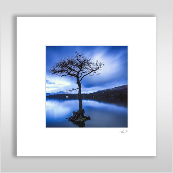 Day is Blue - Mounted Print