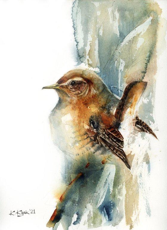 Wren, watercolor of birds and wildlife