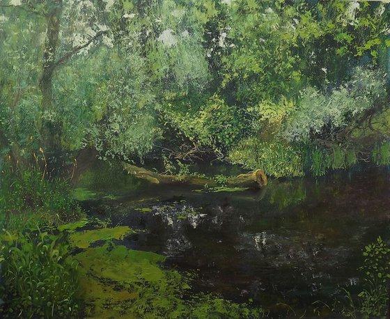 Olhovka river in  Lugansk