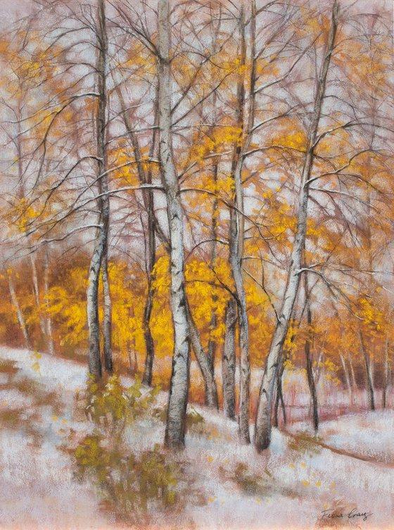 Birches in First Snow, 3