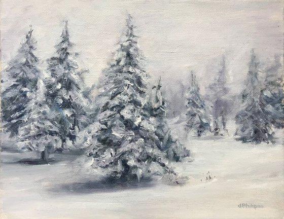Winter Forest Wilderness