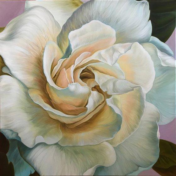 Blooming gardenia