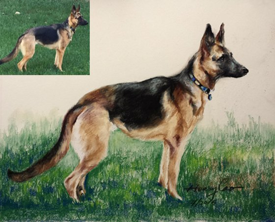 Customized Drawing Dogs From Your Photos