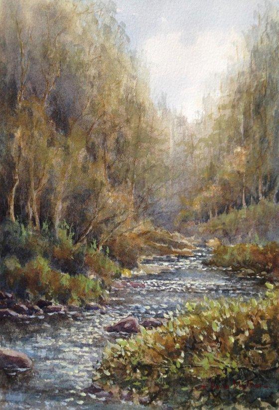River Walkham Dartmoor
