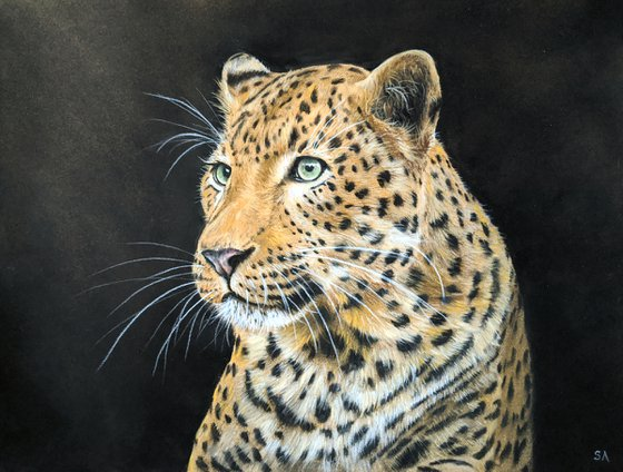 Leopards Gaze IV (Original Painting)