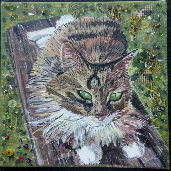 Park Bench Cat
