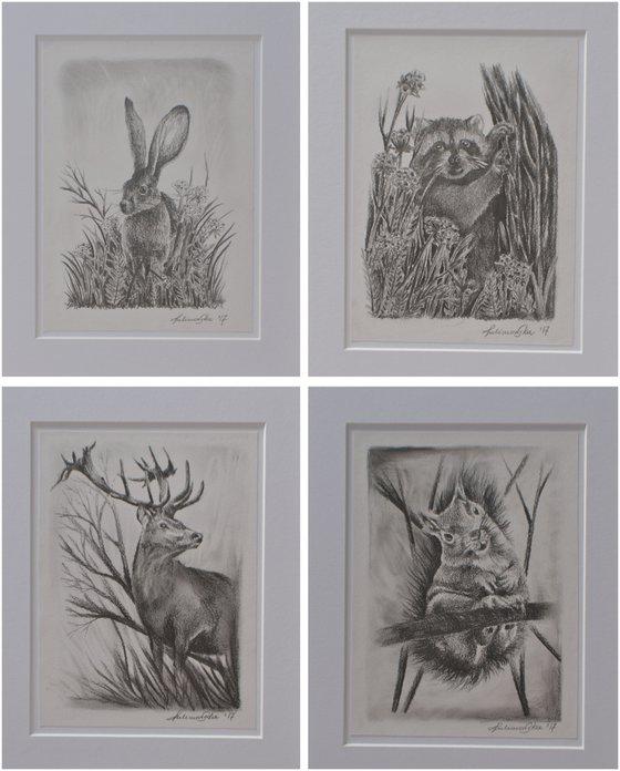 Pencil drawings set of 4