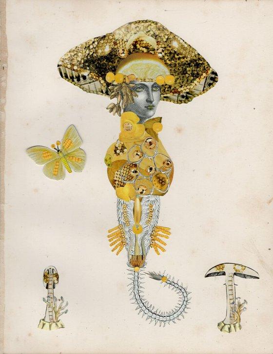 Lemon Disco Fungus (Bisporella citrina)