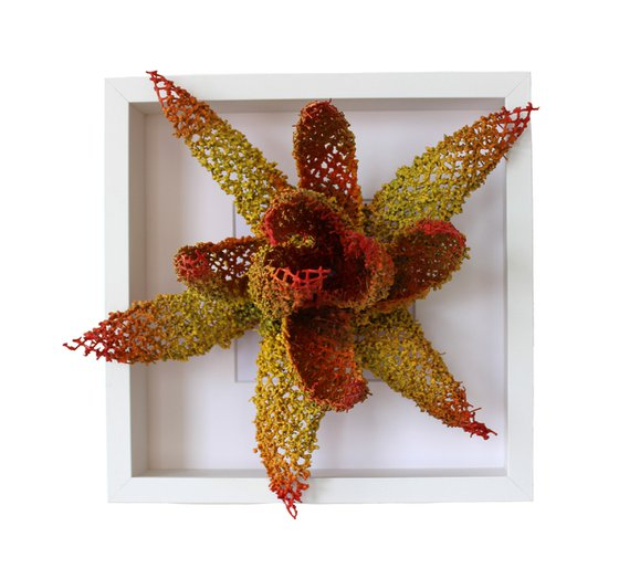 """""""Sea Lily"""""""