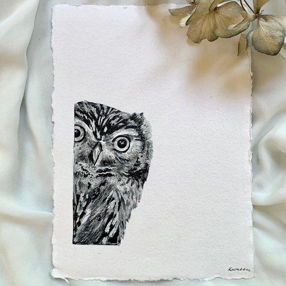 Owl Portrait (Peeking)