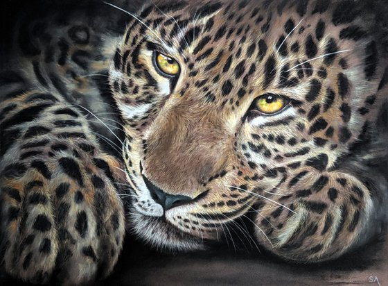 Leopards Gaze II (Original Painting)