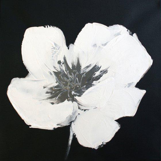 White Poppy I /  ORIGINAL PAINTING
