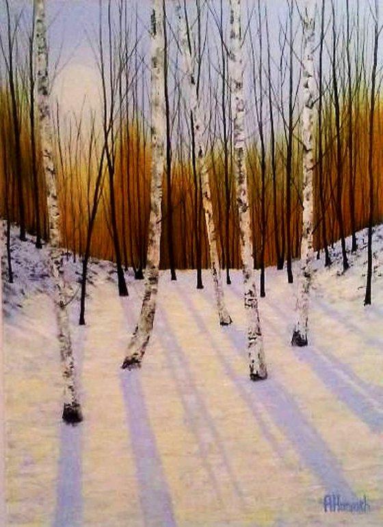 Midwinter Wood