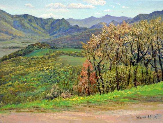 Mountains landscape. Original oil painting