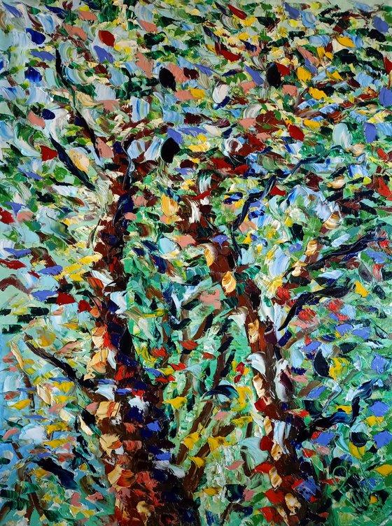 alberi e luce