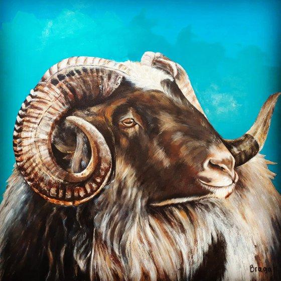 Jacob's Sheep