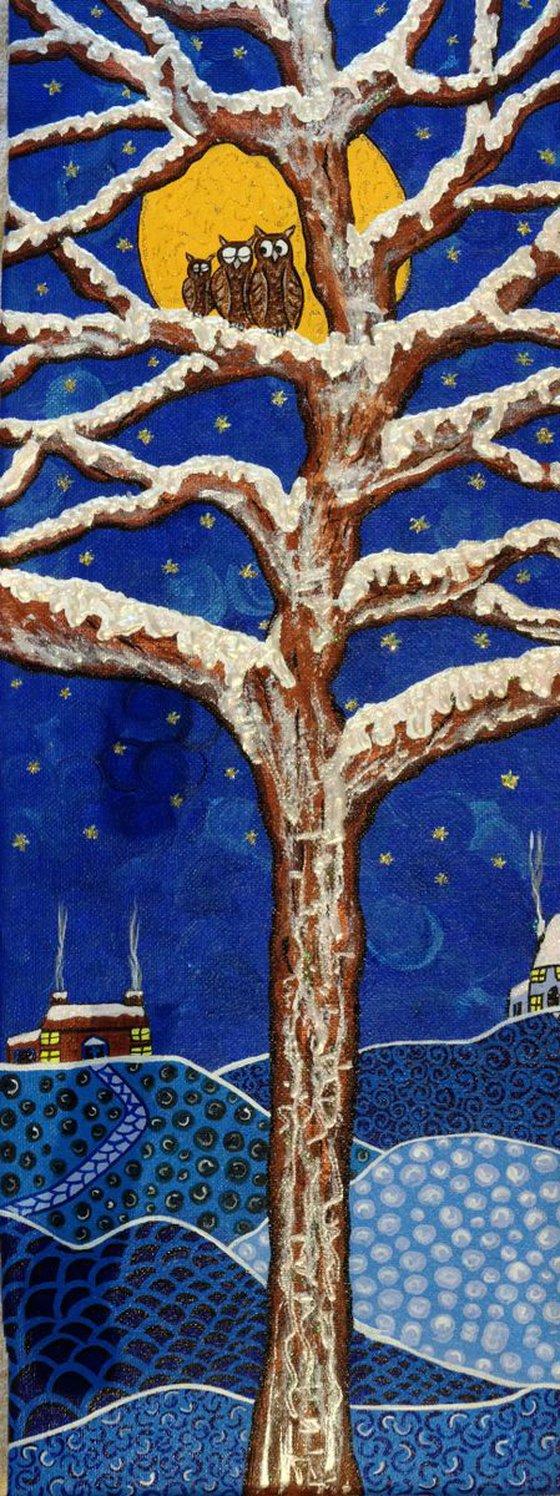 A Starry Winters Night