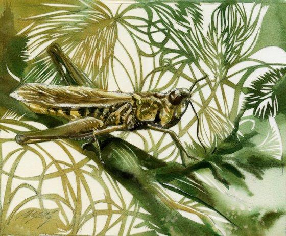 grasshopper watercolor paper cut
