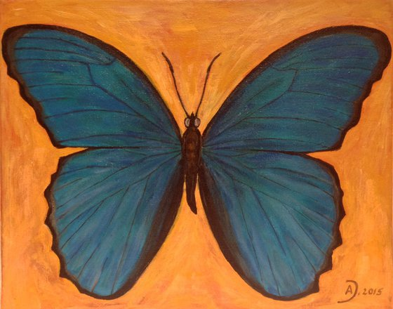 Butterfly VII