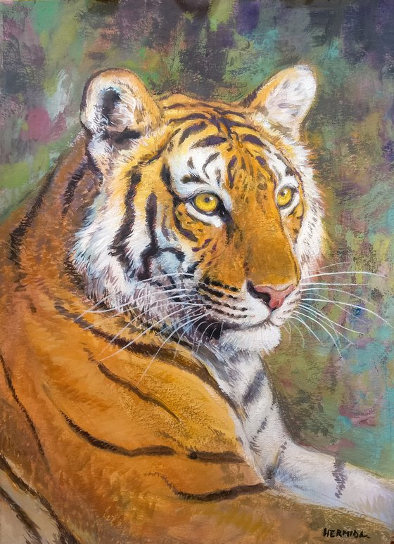 Bengal tiger II