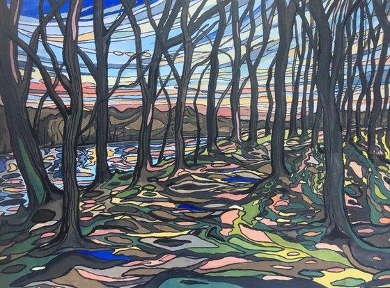 Woodland Sunset Technicolour