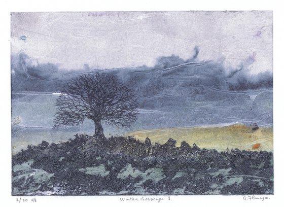 Winter Bogscape 3 -  Ireland
