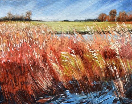 Swaying Reeds