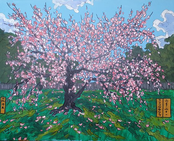 Blossom  #29