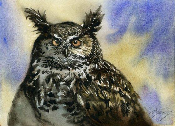 long-ear owl