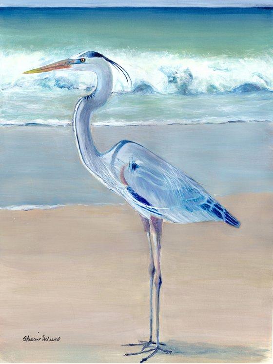 Sanibel Blue Heron