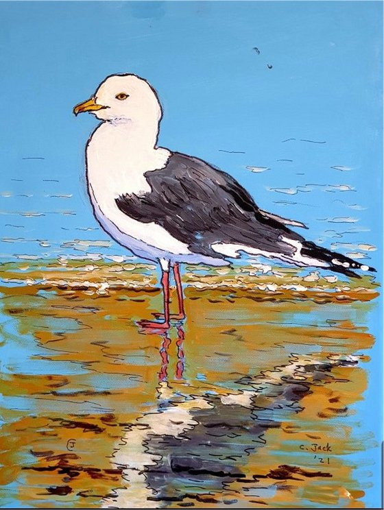 Seagull #10