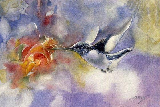 The flight of the humming bird