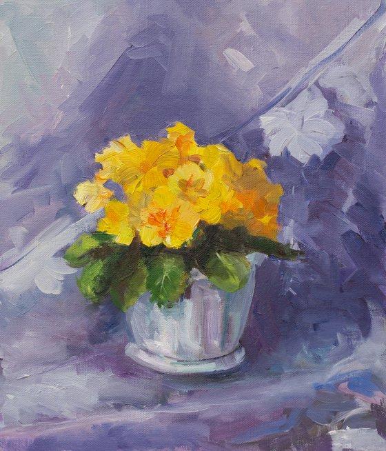 Yellow primrose. Etude