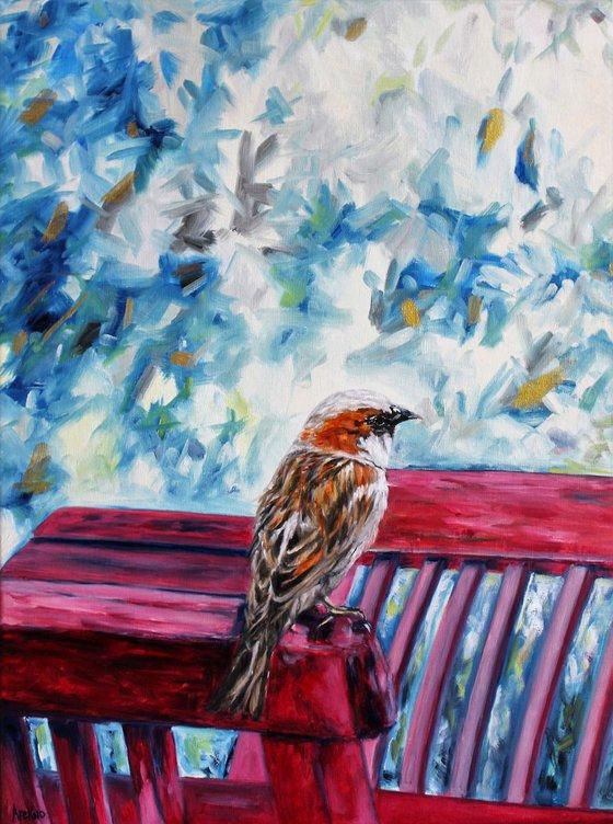 Patient Sparrow