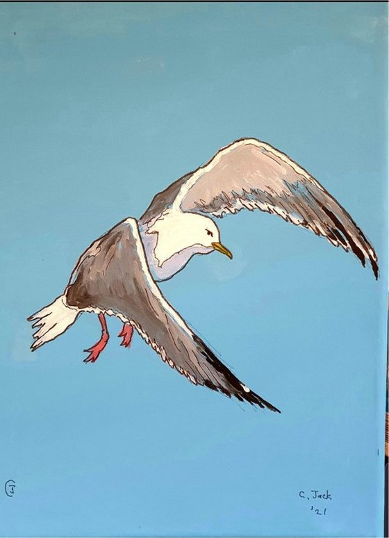 Seagull #9
