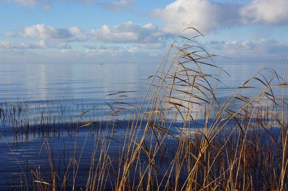Photography | Curonian Lagoon | Mirrors of Curonian Lagoon III
