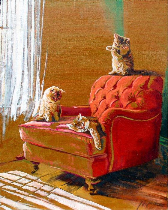 Sunlit lounge kitties